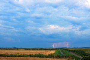 Distant lightning strikes over agricultural field